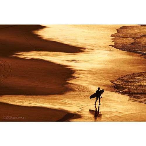 $100 Voucher towards an Aquabumps Golden Light Print