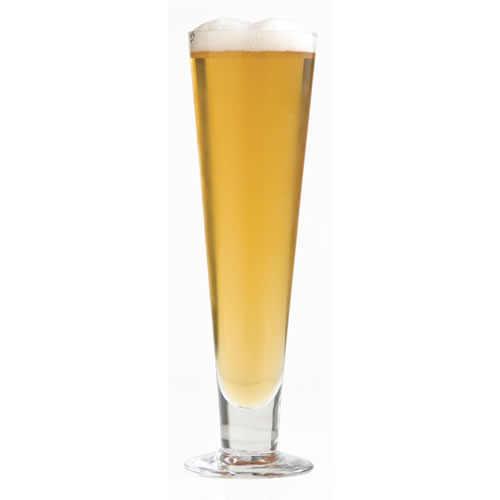 Salut Pilsner Glass Set