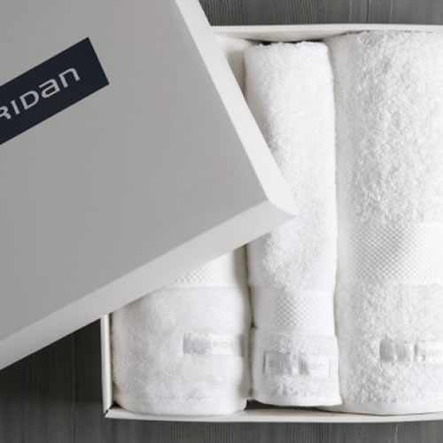 Luxury Egyptian Towel Set in Snow