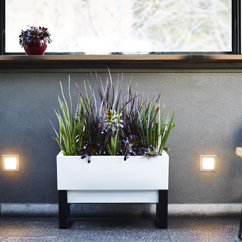 Urban Garden Self Watering Planter