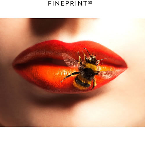 $200 Voucher towards a Lips Print